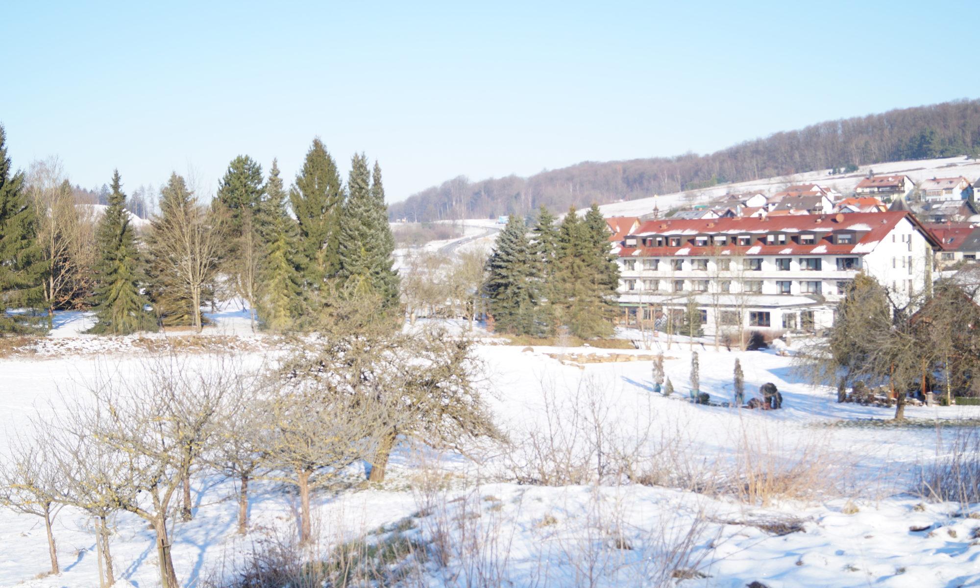 Sicht auf das Hotel Brunnenhof vom Kupp